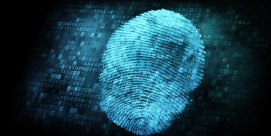 fingerprintbig